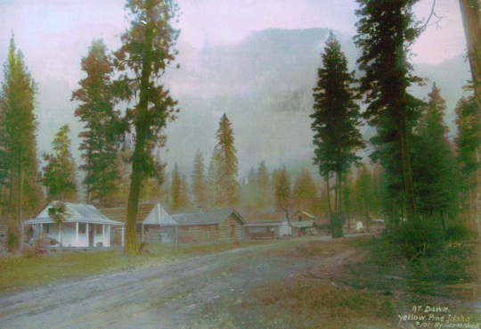 Yellow Pine at dawn, c.1930
